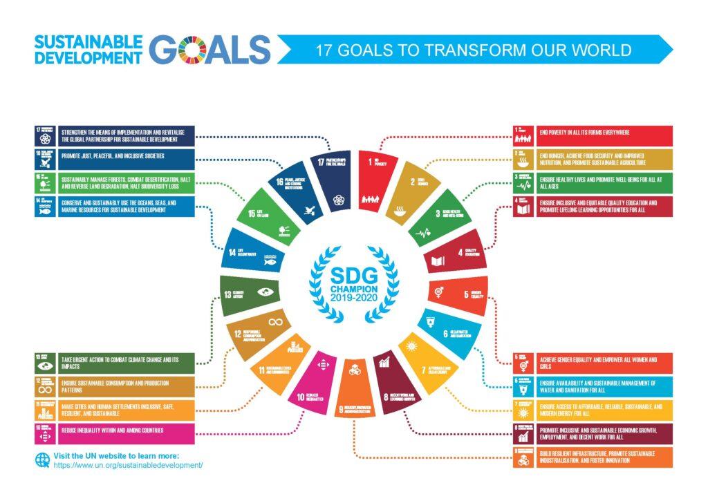 BIM-Infographic-SDG-Champions-2019-2020-page-001