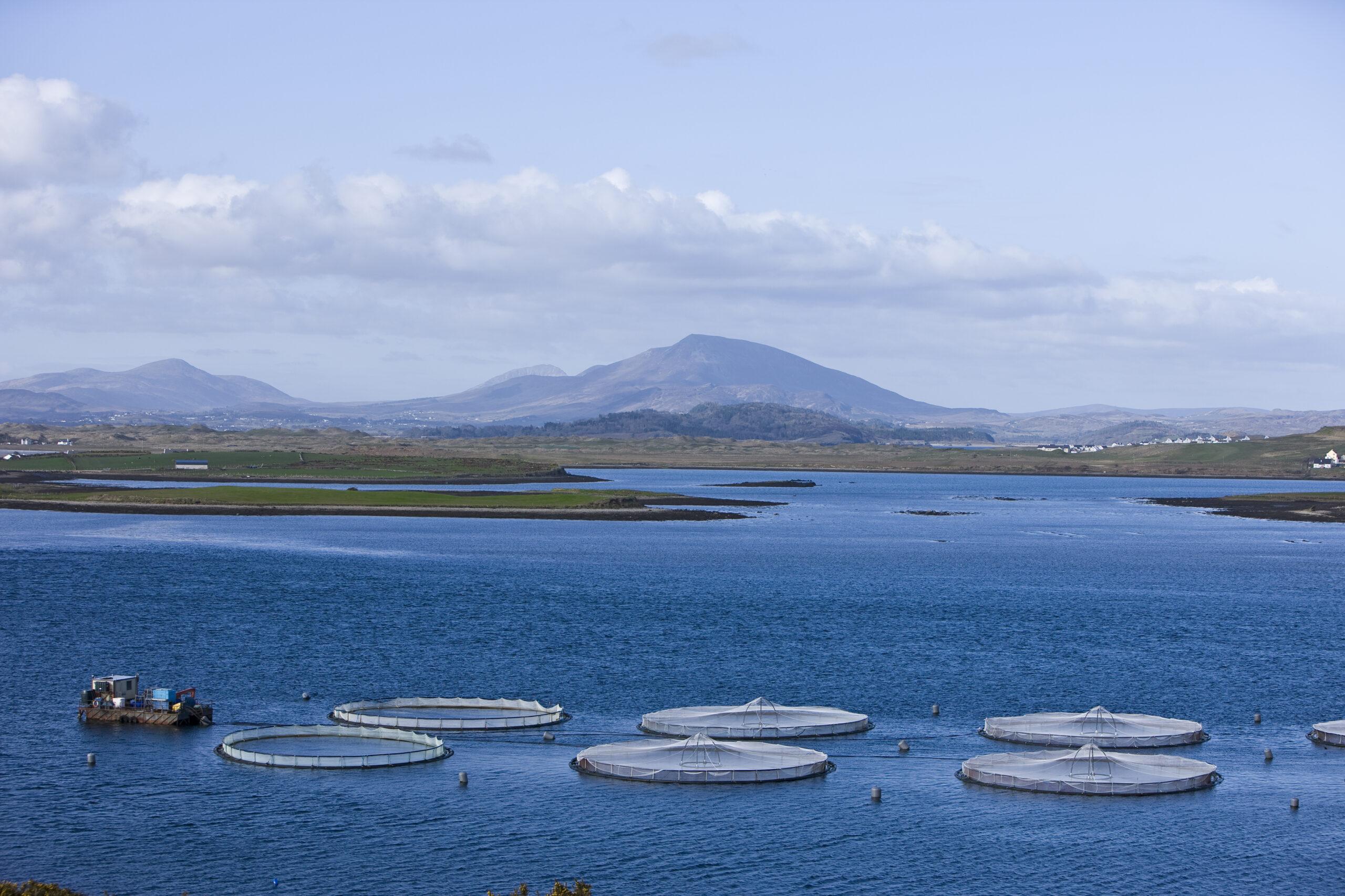 Emerging Technologies in aquaculture - webinar