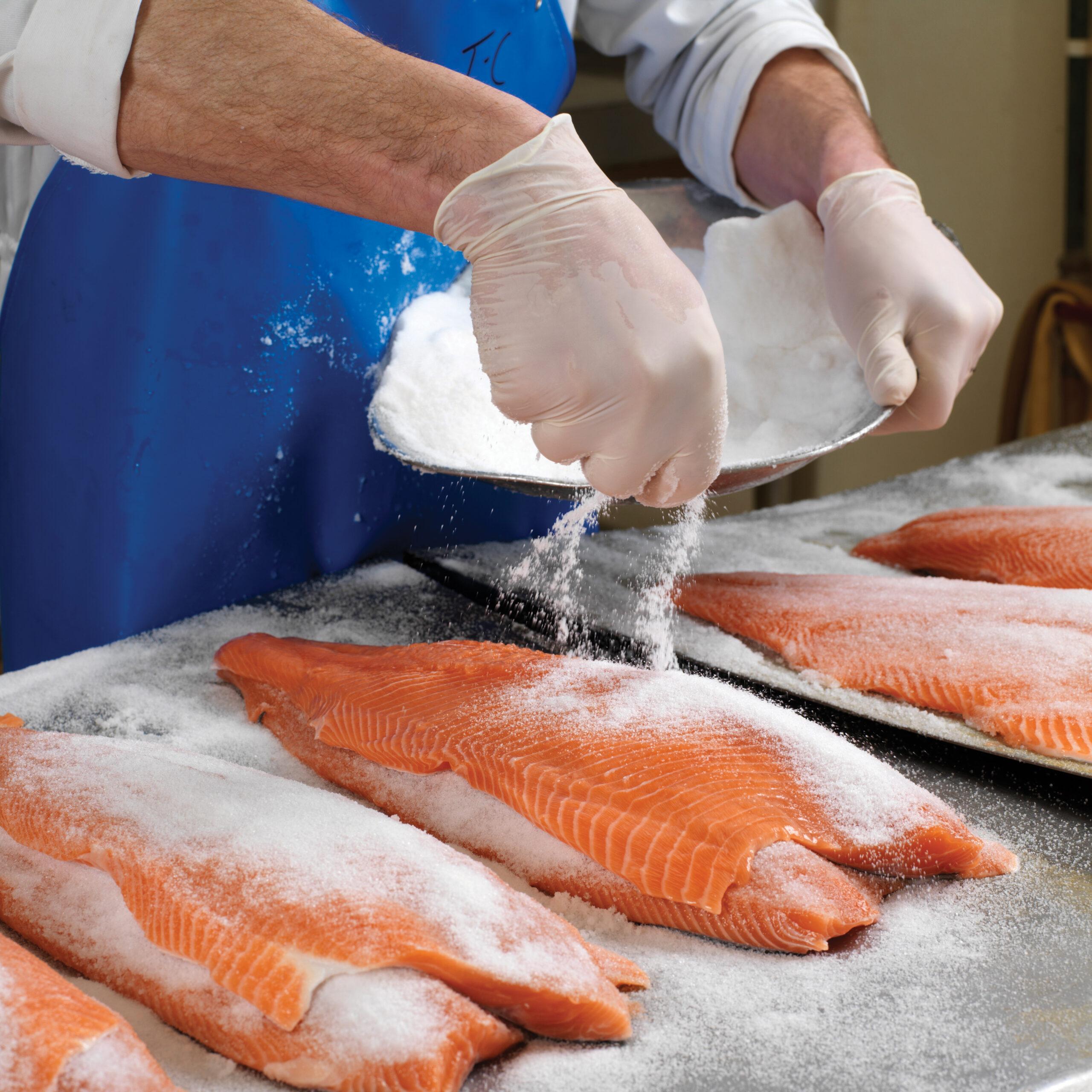 BIM Webinar – Food Waste Management for Irish Seafood Processors